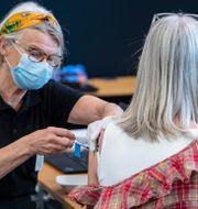 Bild från vaccination i Stockholm.  Johan Nilsson/TT / TT NYHETSBYRÅN