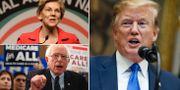 Elizabeth Warren/Bernie Sanders/Donald Trump. TT
