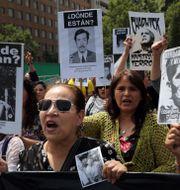 Nära en miljon människor demonstrerade  Rodrigo Abd / TT NYHETSBYRÅN