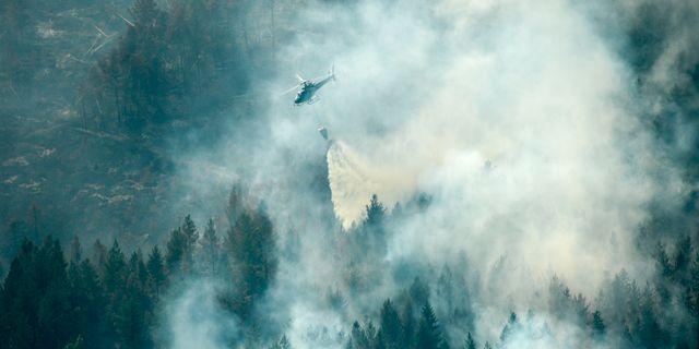 Släckningsarbete med helikopter över branden i Ljusdal. Maja Suslin/TT / TT NYHETSBYRÅN