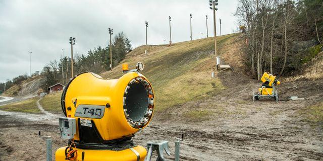 Hammarbybacken i södra Stockholm har också slagits av blidvädret. Tomas Oneborg/SvD/TT / TT NYHETSBYRÅN