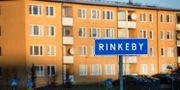 Förorten Rinkeby utanför Stockholm Janerik Henriksson/TT / TT NYHETSBYRÅN