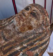 Ett av fynden från de nya utgrävningarna.  Nariman El-Mofty / TT NYHETSBYRÅN
