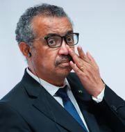 WHO-chefen Tedros Adhanom Ghebreyesus Denis Balibouse / TT NYHETSBYRÅN