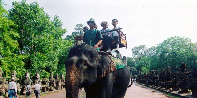 Turister rider på elefanter vid Angkor Wat-templet i Kambodja. Arkivbild. LEI BAISONG / TT NYHETSBYRÅN