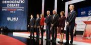 Några av politikerna som vill utmana Donald Trump om presidentposten. Chris Carlson / TT NYHETSBYRÅN