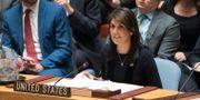 USA:s FN-ambassadör Nikki Haley Mary Altaffer / TT / NTB Scanpix