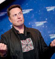 SpaceX owner and Tesla CEO Elon Musk arrives on the red carpet for the Axel Springer media award, in Berlin, Germany, Tuesday, Dec. 1, 2020. Britta Pedersen / TT NYHETSBYRÅN
