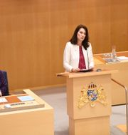 Arkivbild: Utrikesminister Ann Linde vid utrikespolitisa debatten i riksdagen i februari. Ali Lorestani / TT / TT NYHETSBYRÅN