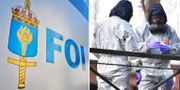 FOI/Brittiska agenter undersöker platsen där ex-spionen och hans dotter hittades.  TT