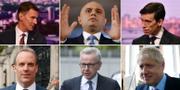 Från övre raden vänster: Jeremy Hunt, Sajid Javid, Rory Stewart, Dominic Raab, Michael Gove och Boris Johnson.  TT