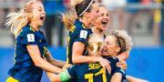 Sverige jublar efter slutsignalen. SIMON HASTEGÅRD / BILDBYRÅN