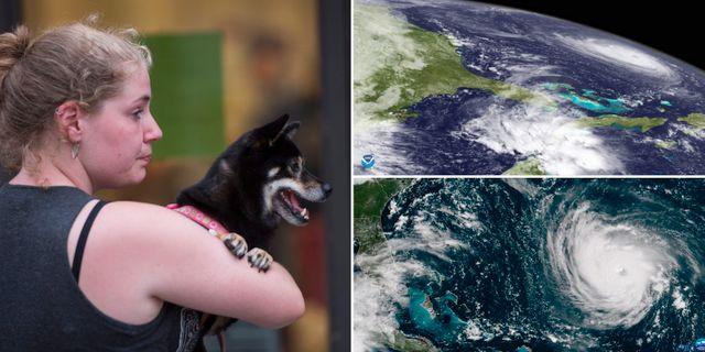 Till vänster: En kvinna väntar på att få gå in i ett orkanskydd i Wilmington, South Carolina. Till höger: Satellitbilder visar orkanen Florence på väg in mot kusten TT