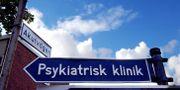 Illustrationsbild Björn Larsson Ask / SvD / TT / TT NYHETSBYRÅN