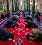 Uigurer i Xinjiang ber. Mark Schiefelbein / TT NYHETSBYRÅN