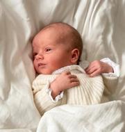 Prins Julian Prins Carl Philip