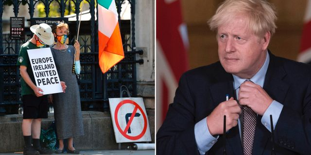 Brittiska demonstranter som är för EU, Boris Johnson. TT