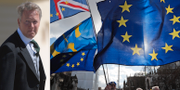 """Den brittiska ambassadören i Sverige David Cairns jobbar hårt för att undvika en """"no-deal""""-brexit. TT"""
