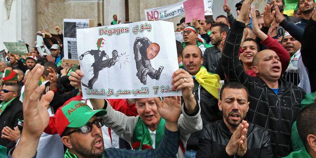 Demonstranterna håller upp en karikatyr av tillfällige premiärministern Noureddine Bedoui. - / AFP