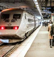 SJ-tåg på Stockholms central. Tomas Oneborg/SvD/TT / TT NYHETSBYRÅN