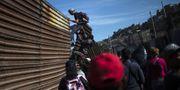 Oroligheterna vid gränsen mellan USA och Mexiko. PEDRO PARDO / AFP