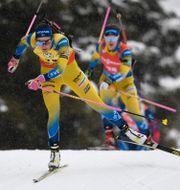Hanna Öberg under dagens tävling Andreas Schaad / TT NYHETSBYRÅN