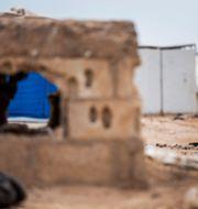 Al-Hol lägret i Syrien.  Baderkhan Ahmad / TT NYHETSBYRÅN