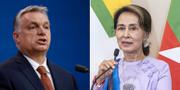 Viktor Orban och Aung San Suu Kyi.  TT