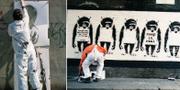 Bilderna som påstås visa konstnären Banksy under arbete. Steve Lazarides
