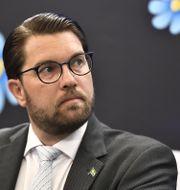 JImmie Åkesson. Ali Lorestani/TT / TT NYHETSBYRÅN