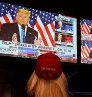 Trump talar under valnatten.  John Locher / TT NYHETSBYRÅN