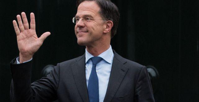 Mark Rutte. Peter Dejong / TT NYHETSBYRÅN