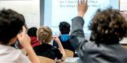 Elever i ett klassrum. Arkivbild. Lars Pehrson/SvD/TT / TT NYHETSBYRÅN