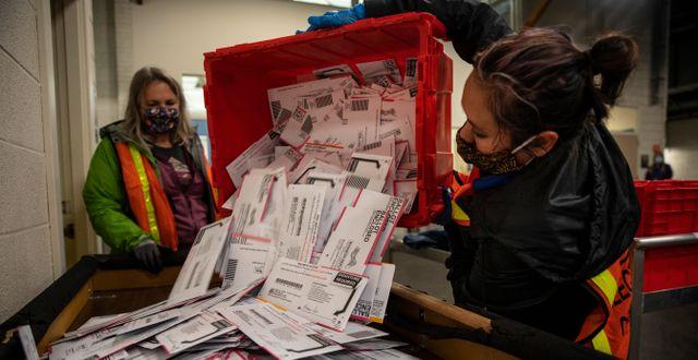 Rösträkning i Oregon. Paula Bronstein / TT NYHETSBYRÅN