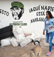 Illustrationsbild. Boende i Nariño, dit många tidigare Farc-medlemmar fått flytta. Fernando Vergara / TT NYHETSBYRÅN