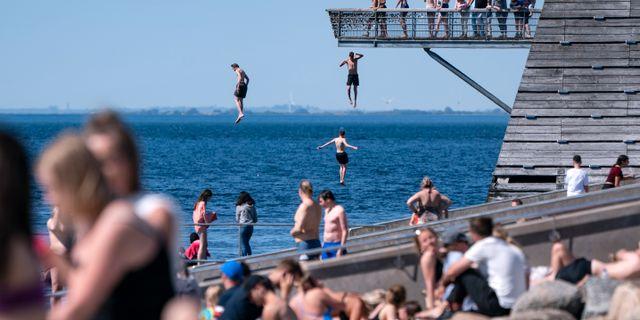 Badsugna soldyrkare i Malmö.  Johan Nilsson/TT / TT NYHETSBYRÅN