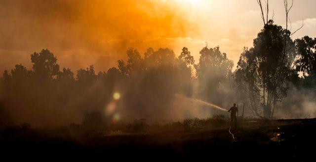 En brand efter en palestinsk ballongattack. Tsafrir Abayov / TT NYHETSBYRÅN