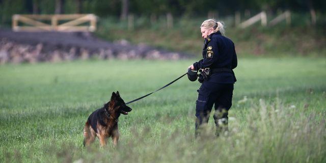 Två personer hittades döda måndagen den 12 juni i en fastighet i Mjölby kommun. Jeppe Gustafsson/TT / TT NYHETSBYRÅN