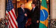 Trump och Bolsonaro.  ALAN SANTOS -  PRESIDENCIA DA RE / TT NYHETSBYRÅN