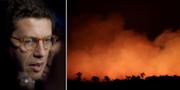 Ricardo Salles/Bränder i Amazonas. TT