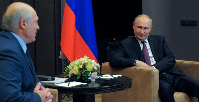 Belarus president Aleksandr Lukasjenko och Rysslands president Vladimir Putin.  Mikhail Klimentyev / TT NYHETSBYRÅN