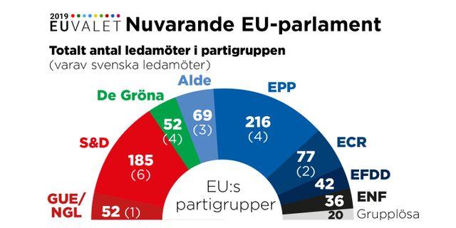 Av de svenska partierna sitter V i partigruppen GUE/NGL, S och Fi i S&D, MP i De Gröna, C och L i Alde, M och KD i EPP och SD i ECR. TT