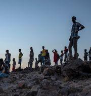 Människor som flytt Tigrayregionen står på en höjd ovanför flyktinglägret Um Raquba i Qadarif i östra Sudan Nariman El-Mofty / TT NYHETSBYRÅN