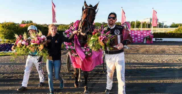 Daniel Redén med hästen Propulsion firar segern. SIMON HASTEGÅRD / BILDBYRÅN