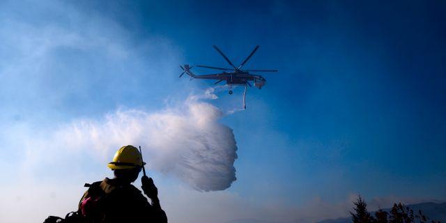 Helikopter som deltog i släckningen av en brand i tisdags. Noah Berger / TT NYHETSBYRÅN
