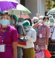 Väljare köar för att lägga sin röst i Rangoon. Thein Zaw / TT NYHETSBYRÅN