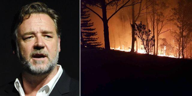 Russell Crowe och en bild på hans eldhärjade ägor.  TT och Russell Crowes Twitter