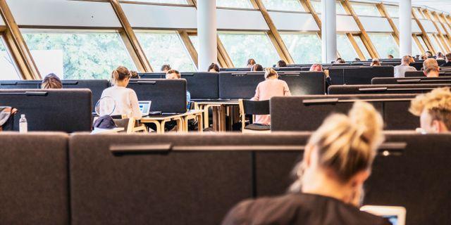 Arkivbild.  Veronica Johansson/SvD/TT / TT NYHETSBYRÅN