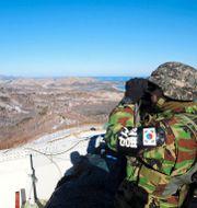 Arkivbild: En sydkoreansk soldat vid en vaktpost i närheten av Goseong, i samma område som den nordkoreanske mannen tog sig i land.  TT NYHETSBYRÅN