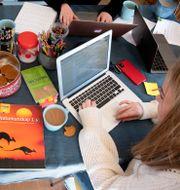 Gymnasieelever studerar hemma. Jessica Gow/TT / TT NYHETSBYRÅN
